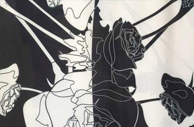 数码印花能做在黑色面料上吗?